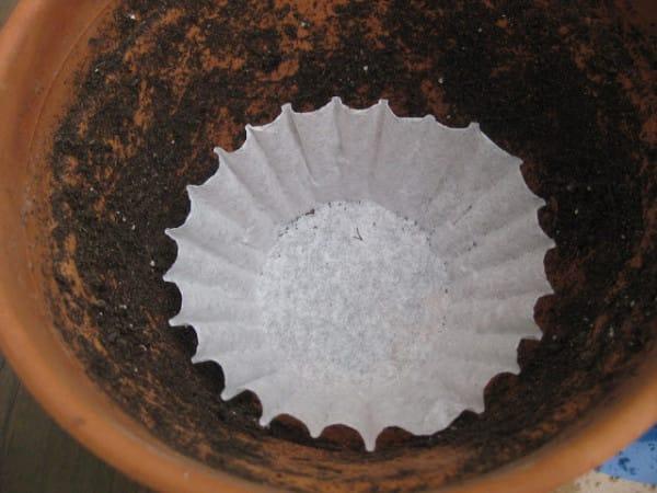 фильтры для кофе