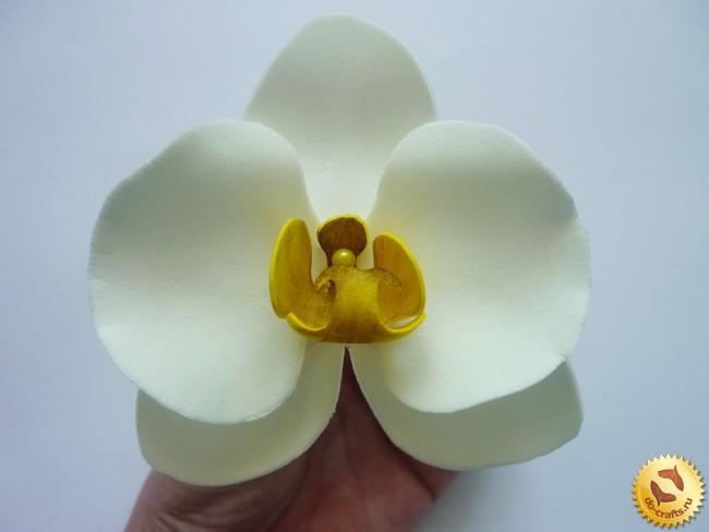 Орхидея из фоамирана своими руками мастер класс фото 987