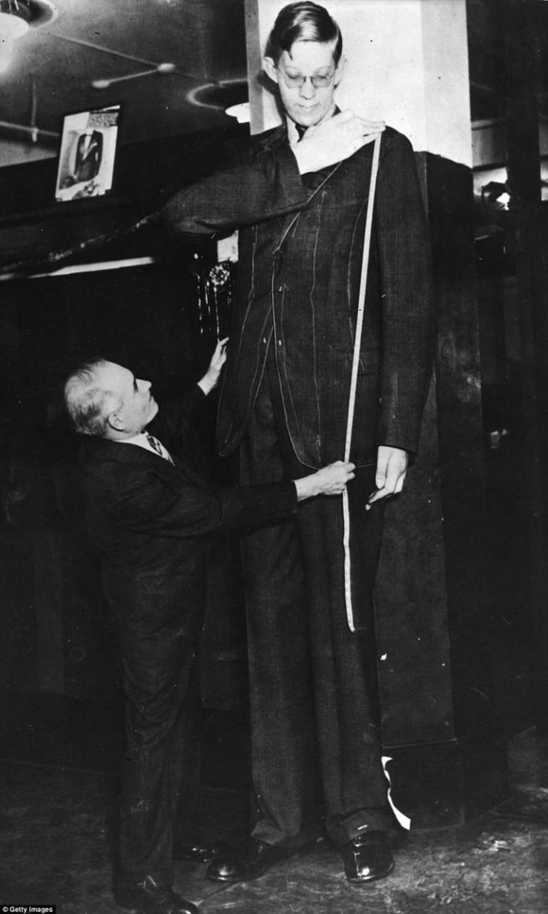 Портной в ателье снимает с Роберта мерки, чтобы сшить ему костюм. На костюм для него требовалось в три раза больше ткани, чем для человека обычного роста акромегалия, великан, опухоль, рекорд, рекорд гиннесса, рекордсмен Гинесса, самый высокий, самый высокий человек