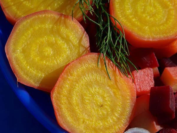 Желтая свекла дача, овощи
