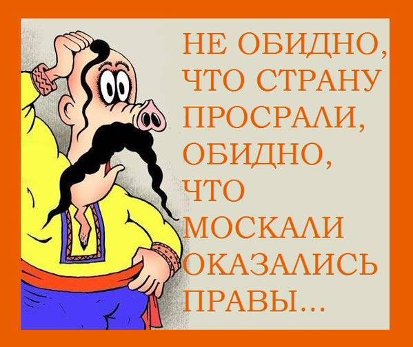Усталость от Украины.