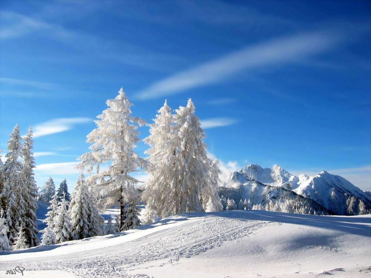 обои зима на рабочий стол пейзаж № 640748  скачать