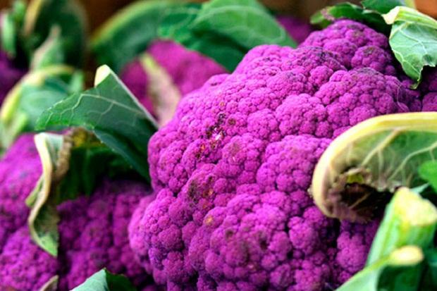 приготовить цветную капусту фиолетового цвета долго ухаживала своей