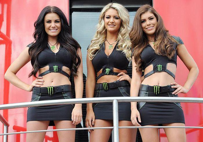 Девушки из Monster Energy (44 фото)фото 0