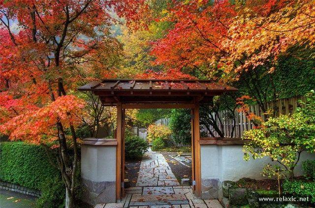 Japan-Park-004
