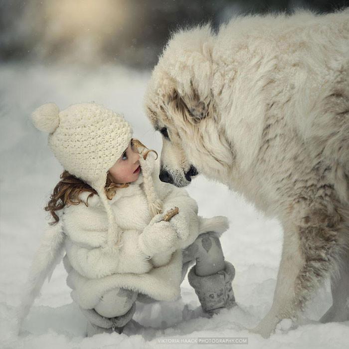 Зимние прогулки  дружба, ребенок, собака