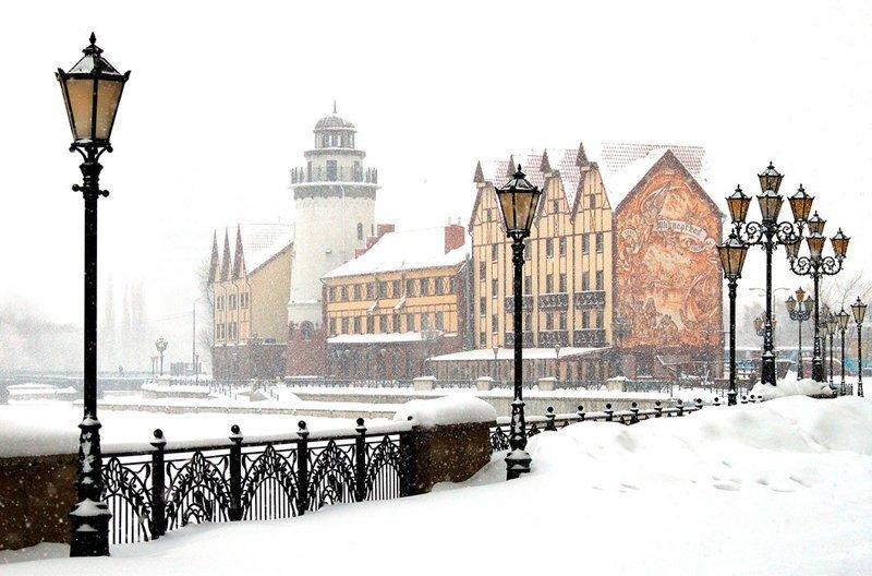 Зимний Калининград зима, красота, природа, россия, фото