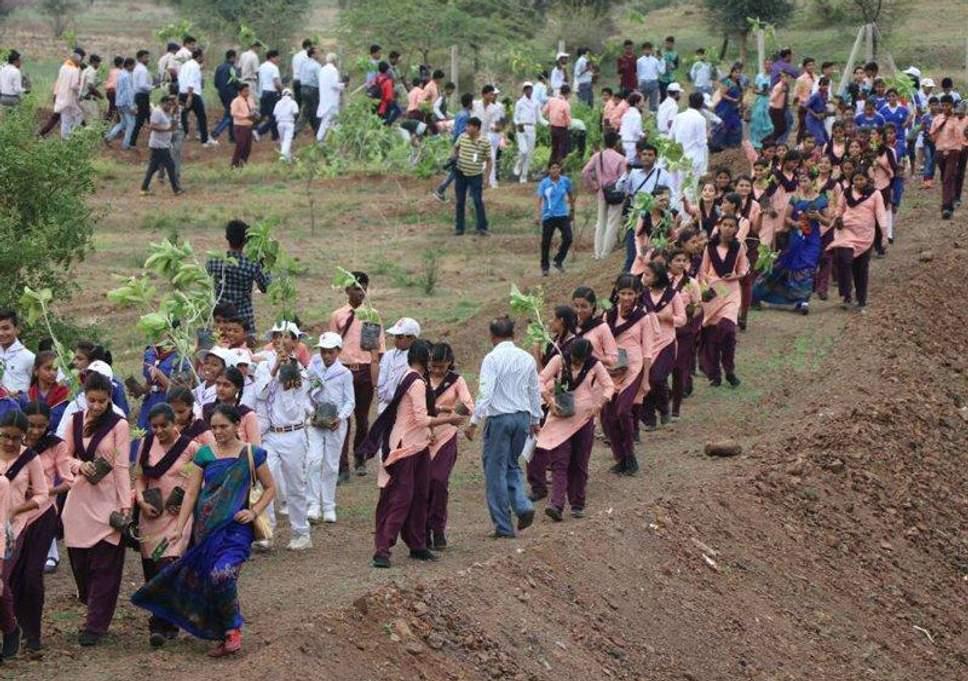 1,5 миллиона индийцев посадили 66 млн деревьев за 12 часов — и побили рекорд