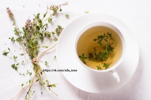 Как заваривать чай с чабрецом: рецепты.