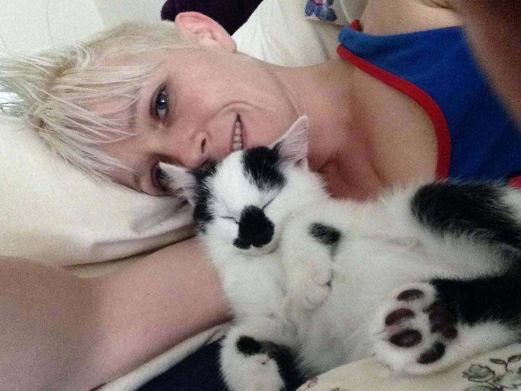 Смерть кошки или почему никогда не стоит держать лилии и кошку в одном доме