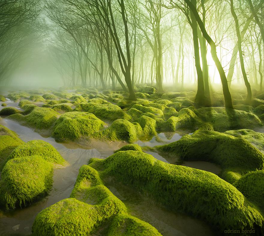 Мистика и загадка в пейзажах Румынии