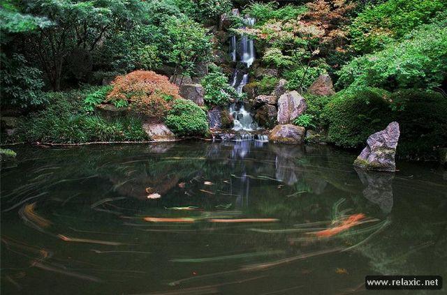 Japan-Park-010