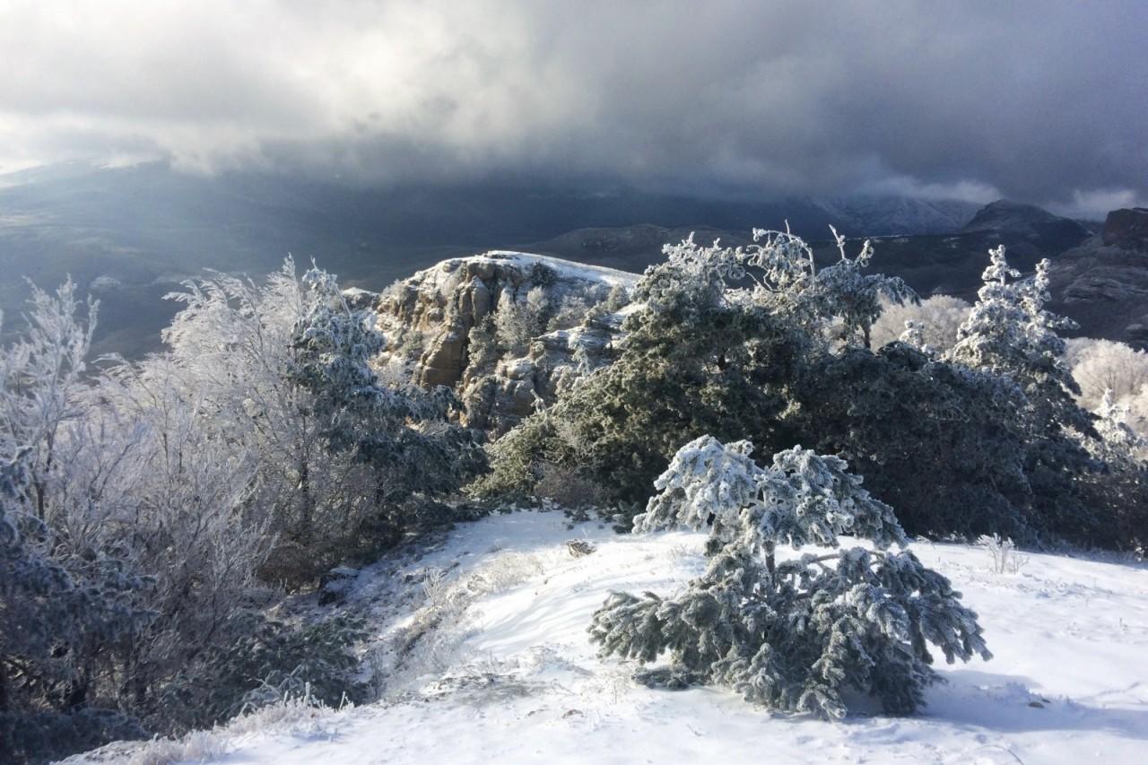 О красоте Крыма и умении созерцать без фотокамеры