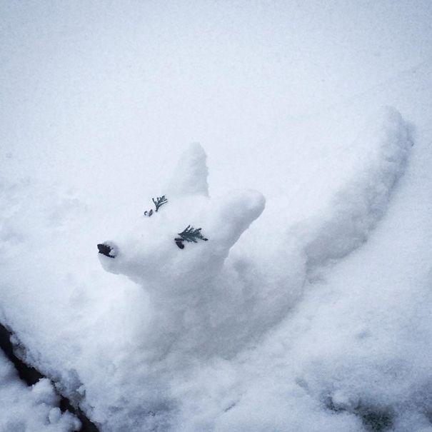 snowfox__605
