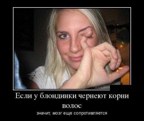 Демотиваторы про блондинок. …