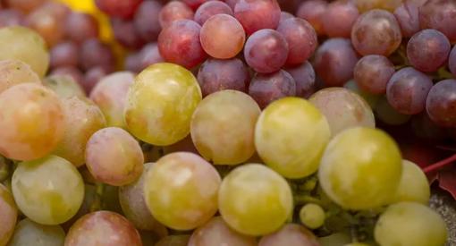 Удивительная польза винограда