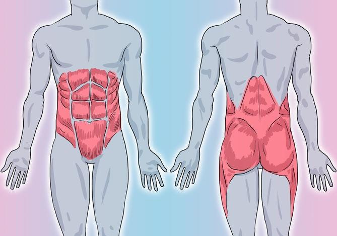 Укрепляем мышечный корсет: 5-минутные упражнения по Мюллеру