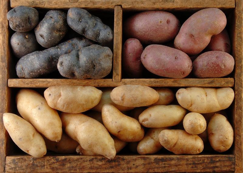 6 ошибок при хранении картофеля