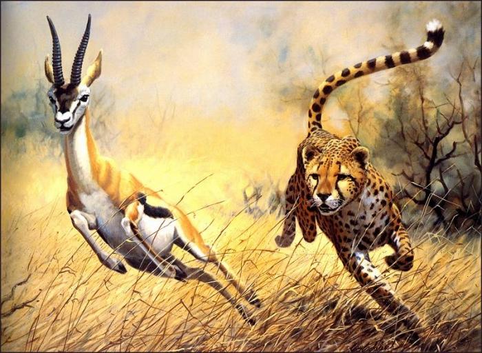 Красота дикой природы от художника Guy Coheleach