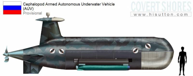 Подводный беспилотник «Цефалопод»: зарубежный взгляд