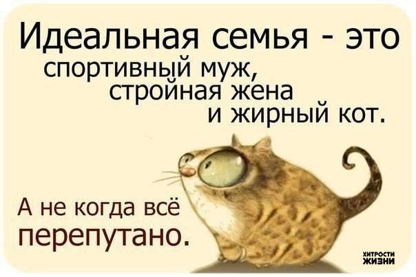 Забавное юморное от Михалыча