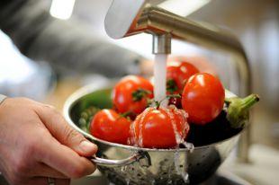 Здоровая еда. 11 полезных овощей и фруктов со своего огорода