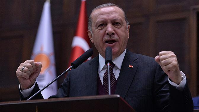 Эрдоган анонсировал войсковую операцию на севере Сирии