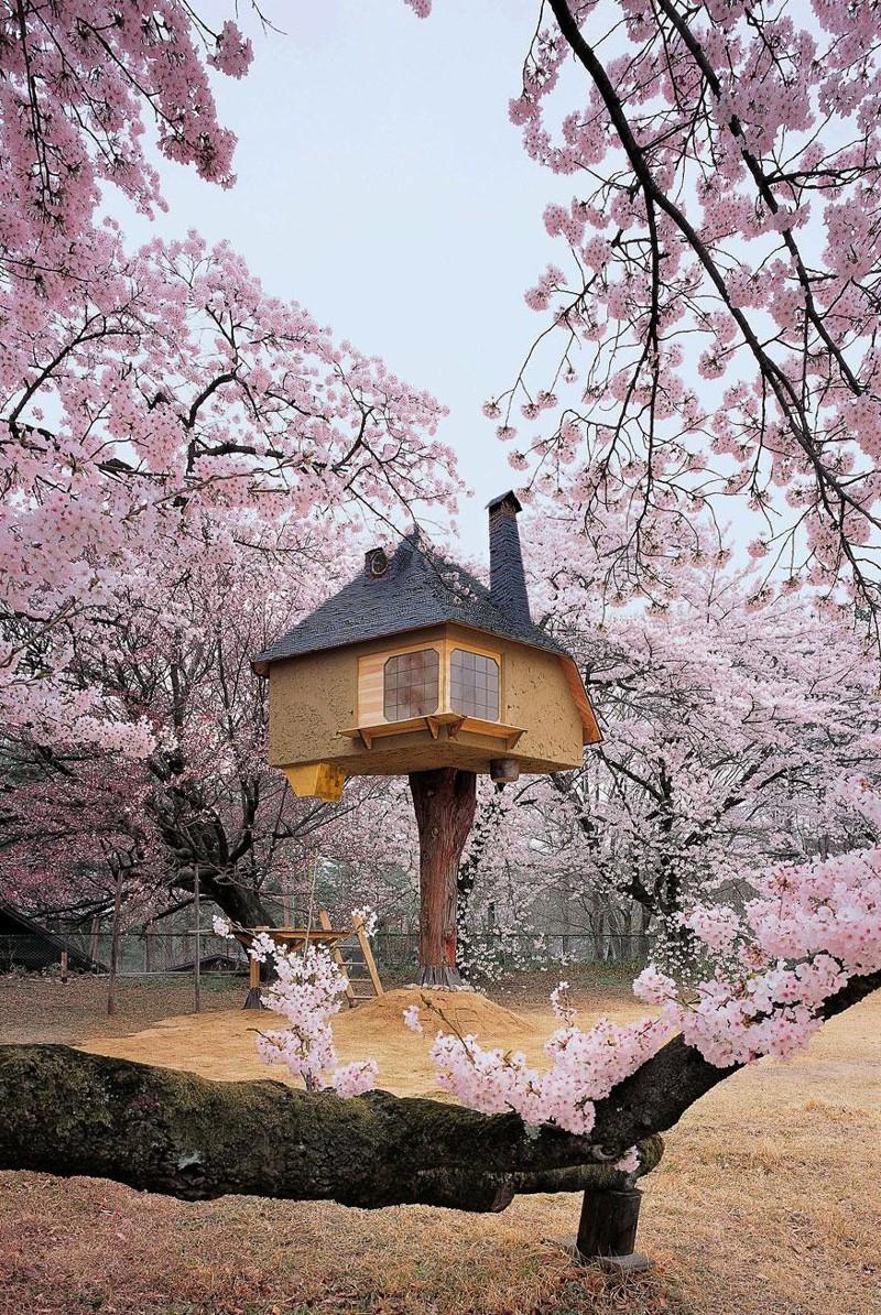 12. Чайный домик Tetsu в Яманаси, Япония. в мире, дом