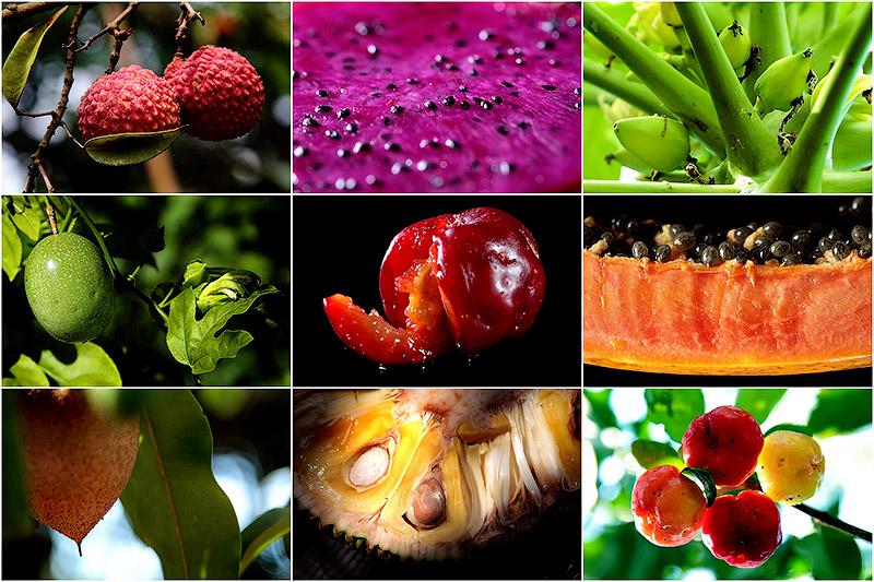 BIGPIC78 Топ 10 самых необычных фруктов