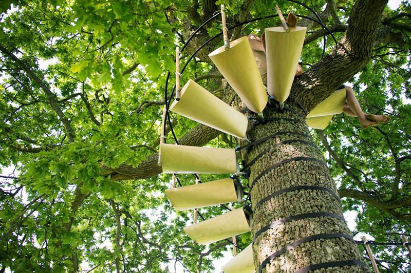 Винтовая лестница, устанавливающаяся на дерево без инструментов дерево, лестница