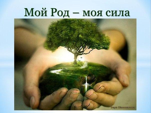 МОЙ РОД - МОЯ СИЛА (в свободном доступе для Вас до 23 февраля!!!)