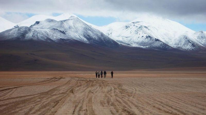 Пустыня Суд Липец, Боливия природа, пустыня