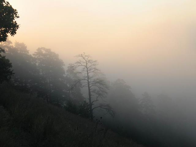 туман (640x480, 18Kb)