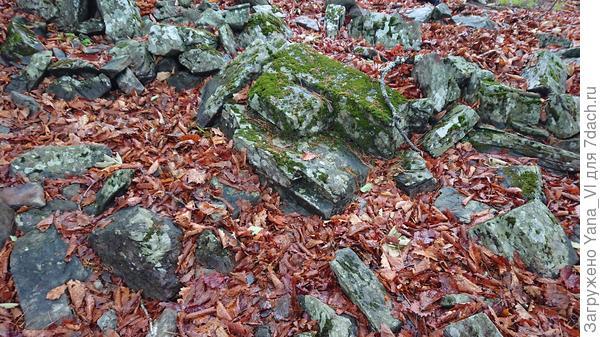 Почва - сплошные камни.