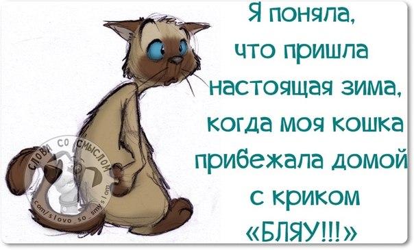 http://mtdata.ru/u23/photo325F/20743768238-0/original.jpg