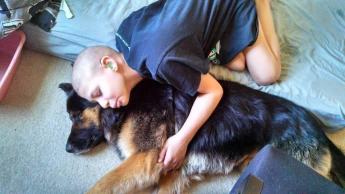 Пес стал другом страдающего от рака мальчика