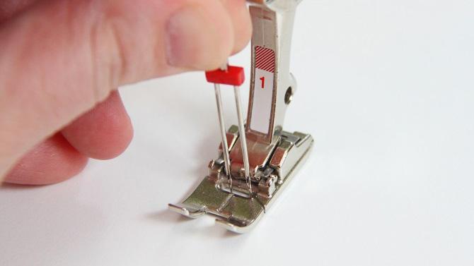 продолговатая прорезь на лапке