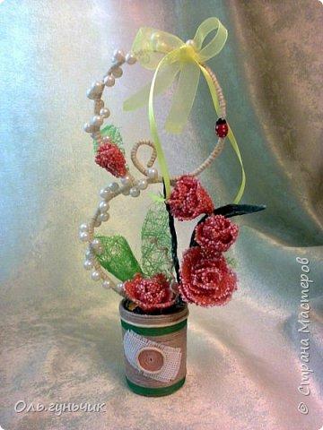Мастер-класс Поделка изделие 8 марта Моделирование конструирование МК розы из  пшена Крупа Проволока Шпагат фото 1