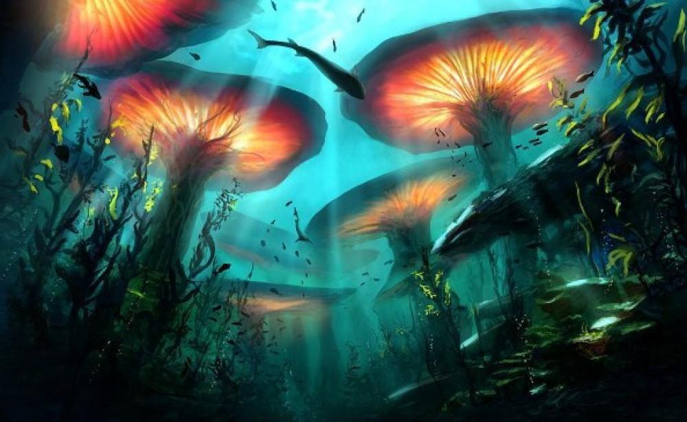 Тайны грибного мира: паутинный мозг как аналог человеческого