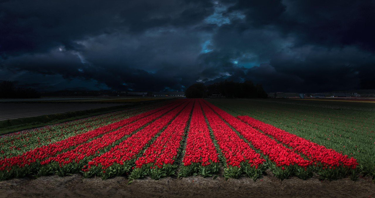 Впечатляющие фотографии грозы весна, гроза, фото