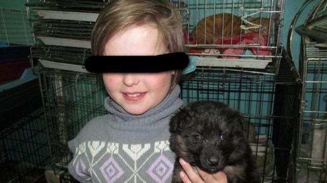 Девочка сбежала от пьющей матери и поселилась в приюте для животных
