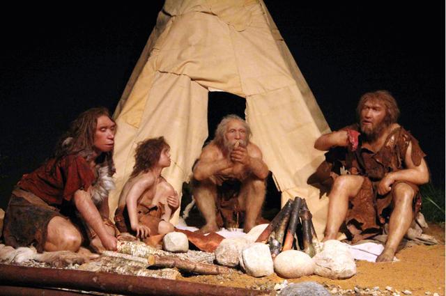 «Дикая» медицина. Как лечились первобытные люди в каменном веке