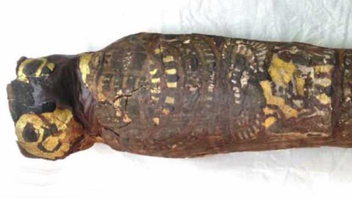 «Мумия сокола, эпоха Птолемеев (IV–I веках до н. э).»