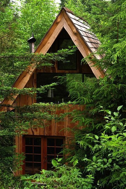 Бюджетный домик в лесу