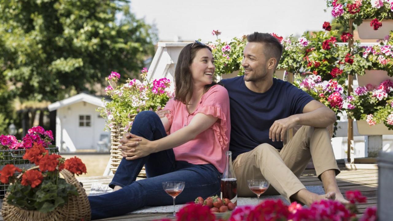 Весна в саду — как вырастить красивую герань