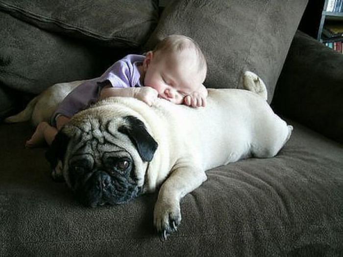 Спят усталые детишки... двойной позитив!