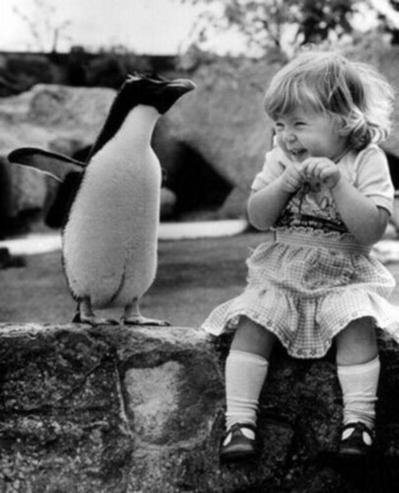 Просто замечательные фотографии дети, животные