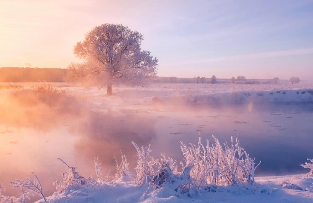 Фотограф ежедневно встает рано утром, чтобы запечатлеть красоту зимы