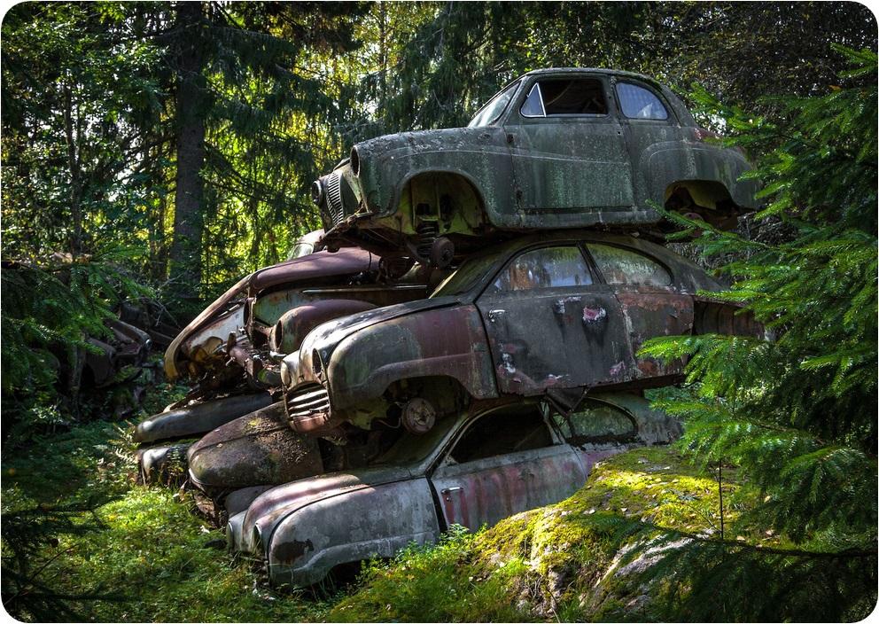 Таинственный лес Швеции классика, лес, тайна