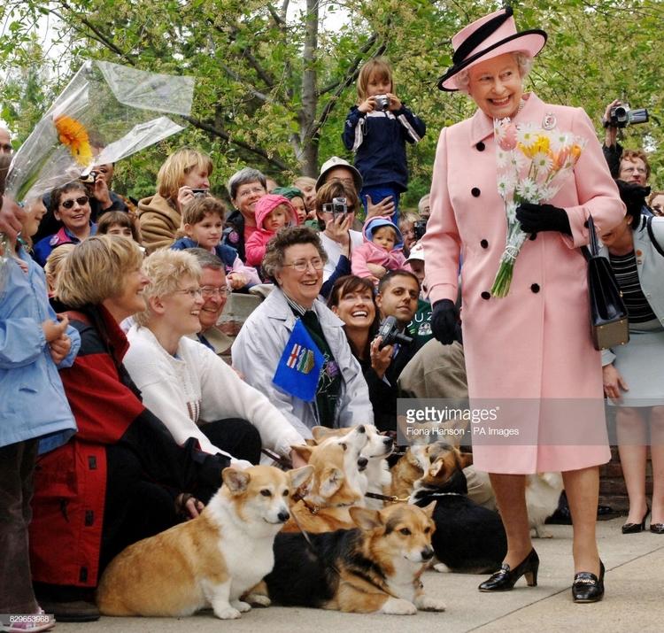 10 интересных фактов о королеве Елизавете II, которые вы, скорее всего, не знали